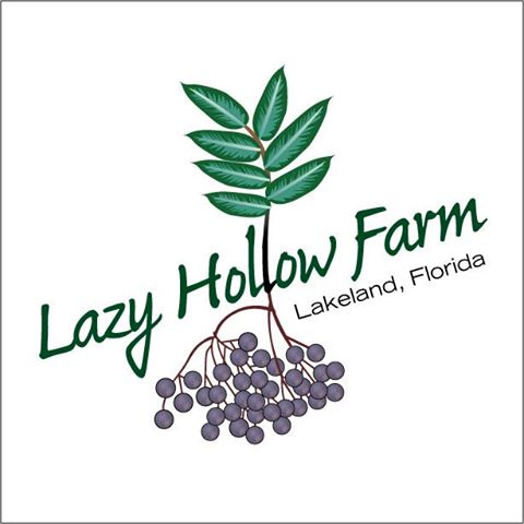 Lazy Hollow Farm